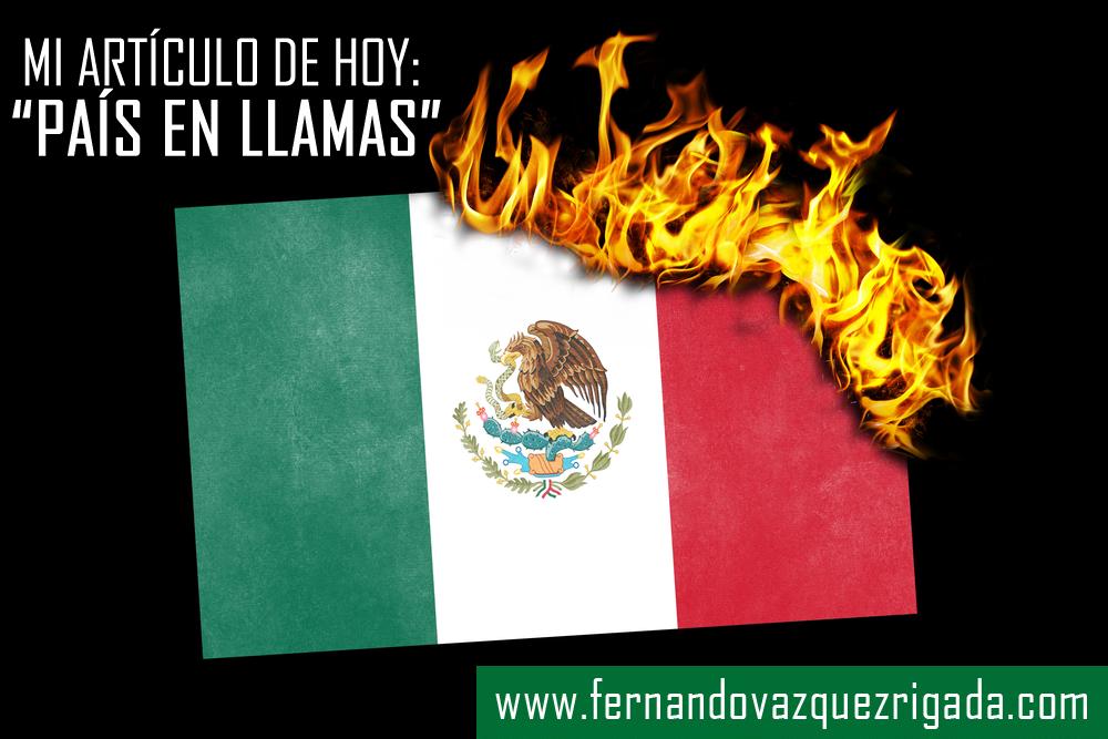 Llamas Blog